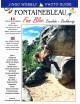 JINGO WOBBLY - Topo d'escalade à Fontainebleau Fun Bloc